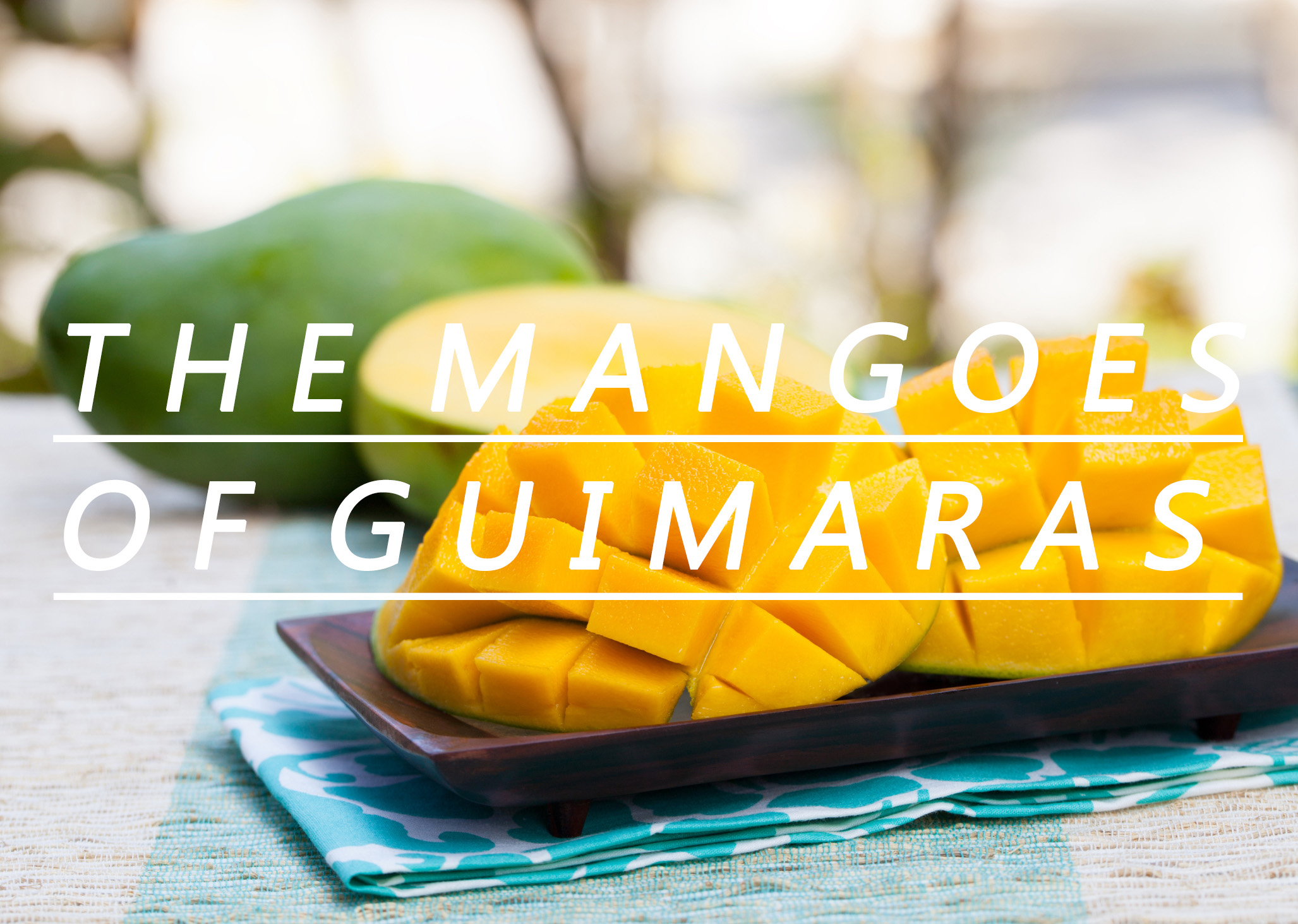 world class mangoes of the island province  guimaras